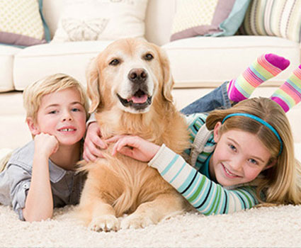 Yellow lab laying with children